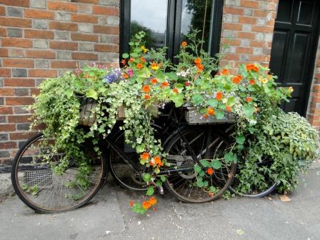 Не дайте сгнить старому велосипеду на свалке, используйте его как декор