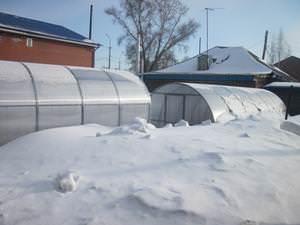 Зимние теплицы из поликарбоната с отоплением