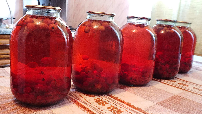 Как сделать сок из красной черемухи